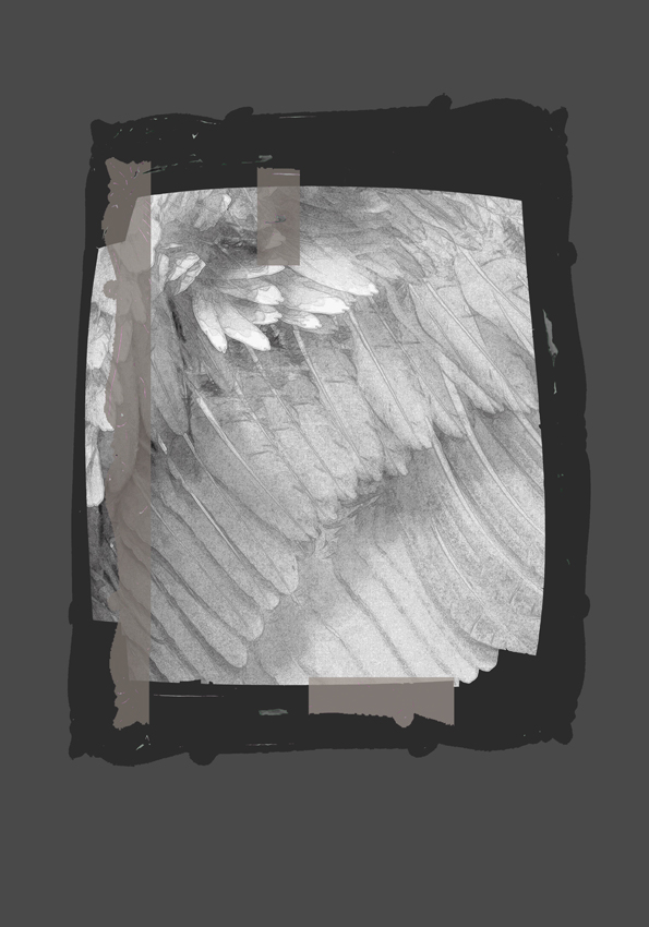 Collage of grey and beige colors and image of feathers, partial framed in a black frame on the website A Better Version