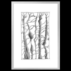 trees aluminium frame