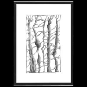 trees black aluminium frame