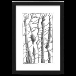 trees black wood frame