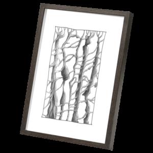 trees dark wood frame