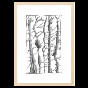 trees wood frame